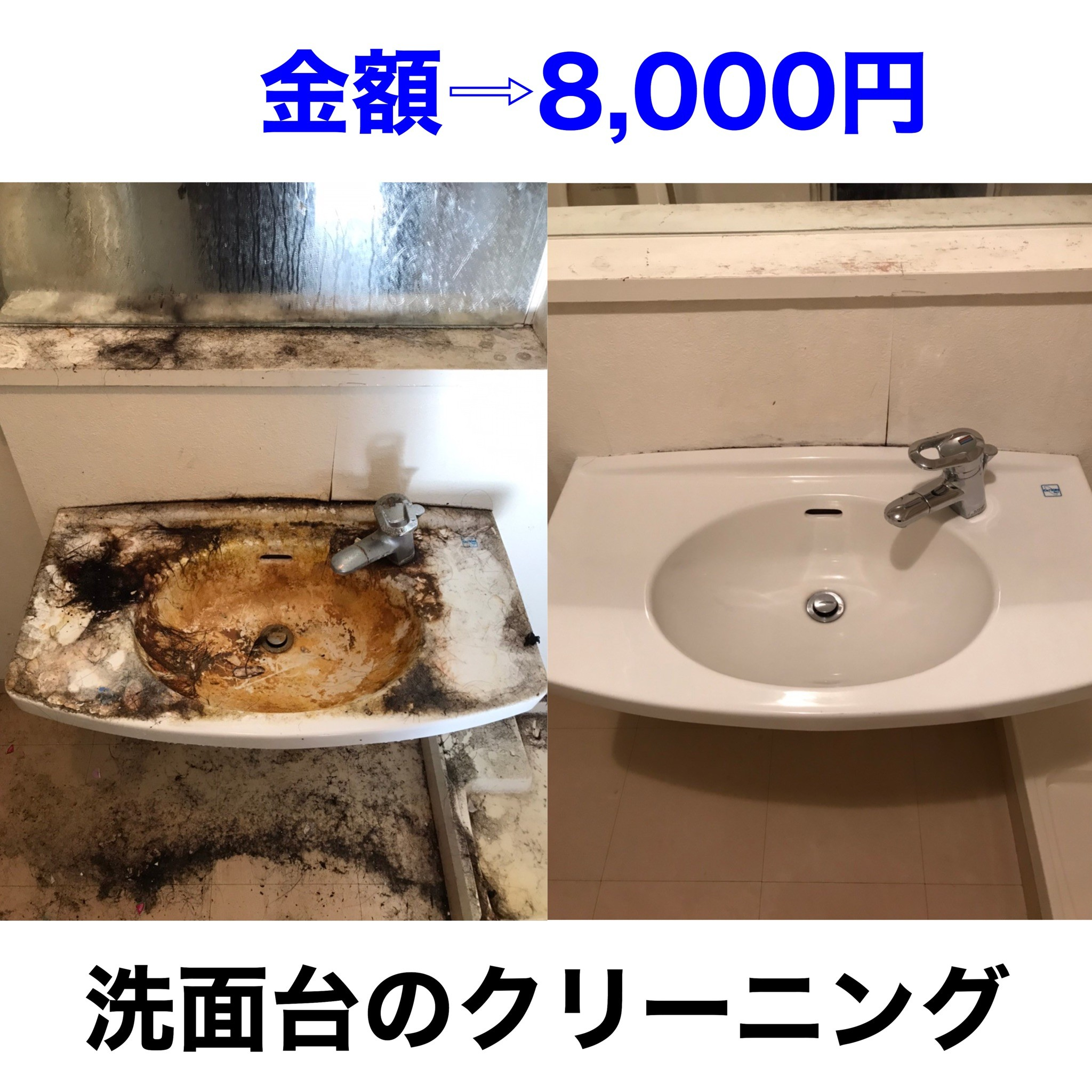 S__550518786